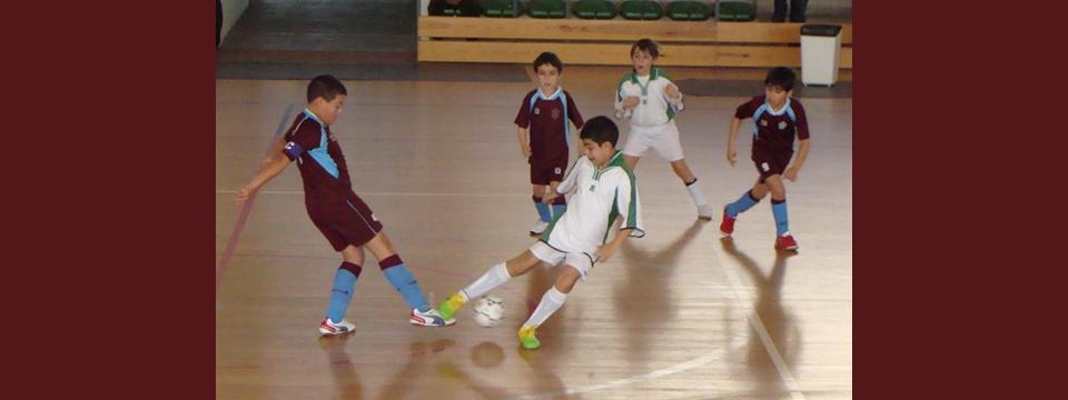 http://www.ligadealges.pt/wp-content/uploads/2012/05/futsal.png